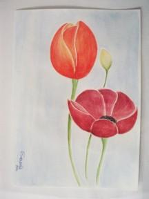 Flowers - Serena Costa